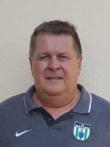 Hannes Domik